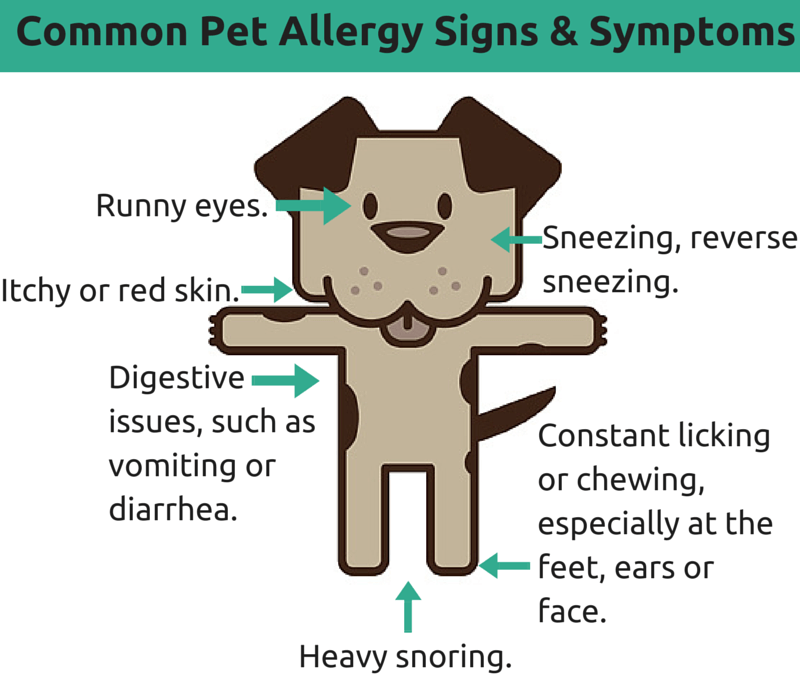 describe the signs and symptoms of common childhood illnesses and allergies The majority of common childhood illnesses are from one of the following common illnesses: allergies the flu-like symptoms common.